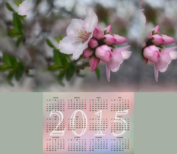 flowering peach tree calendar 2015 p