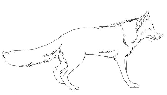 fox template 11