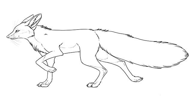 fox template 12