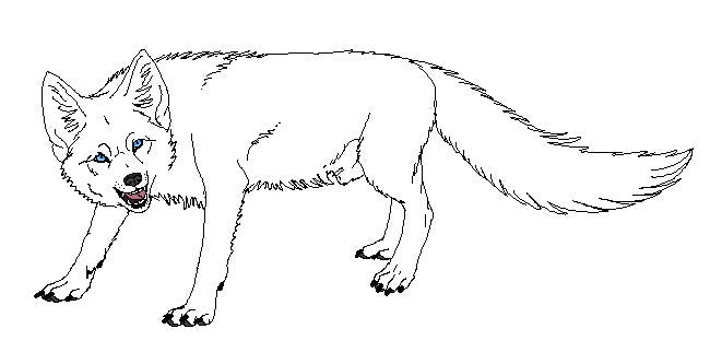 fox template 13