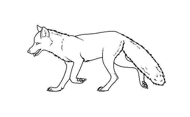 fox template 9