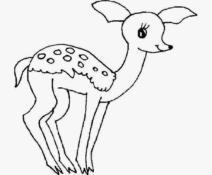 free coloring page of deer