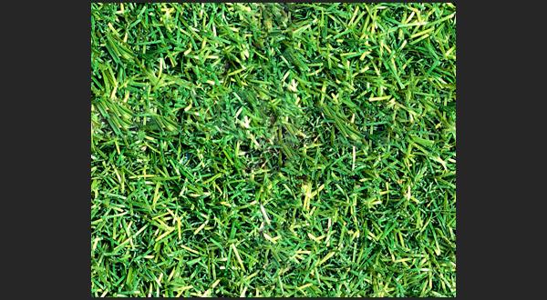 free grass seamless texture