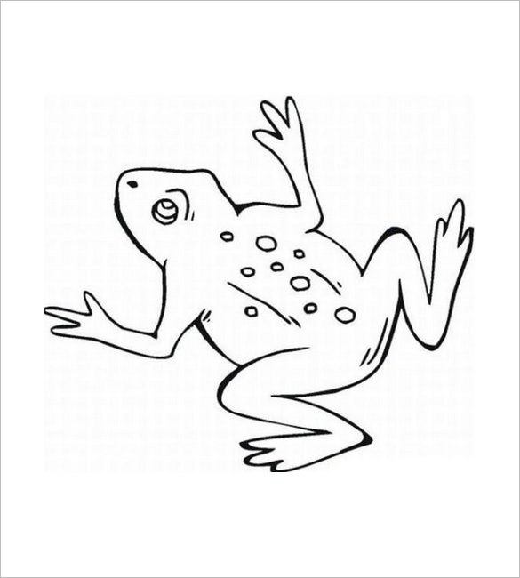 frog outline template