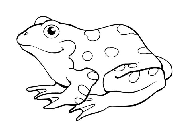 coloring pages frog - photo#30