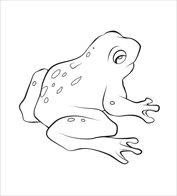 photo regarding Printable Frogs called Frog Template - Animal Templates Free of charge High quality Templates