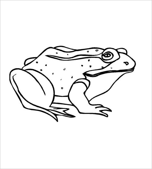 frog template for kids