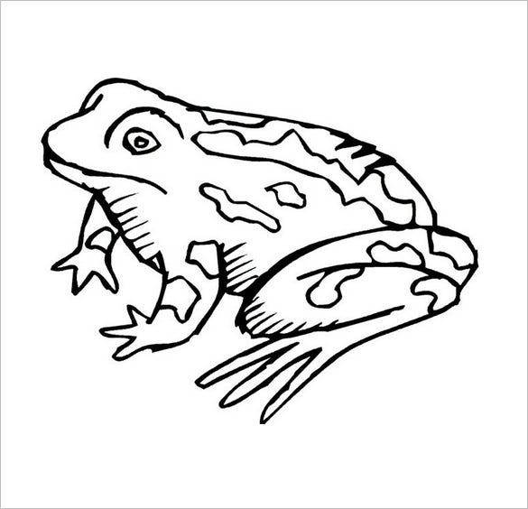 funny frog coloring page1