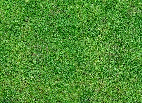 grass 3d texture 2