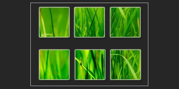 grass icon textures