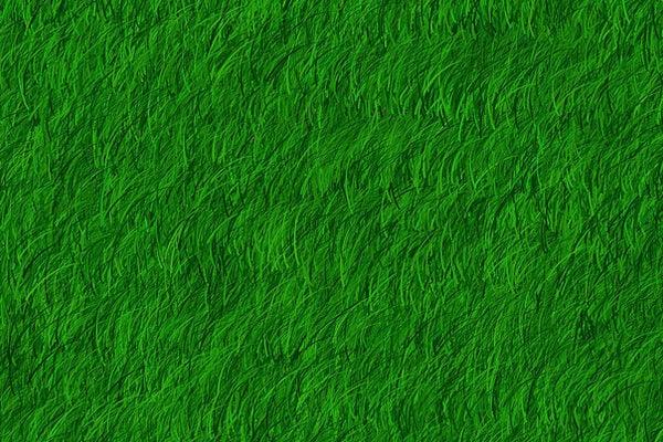 grass texture10