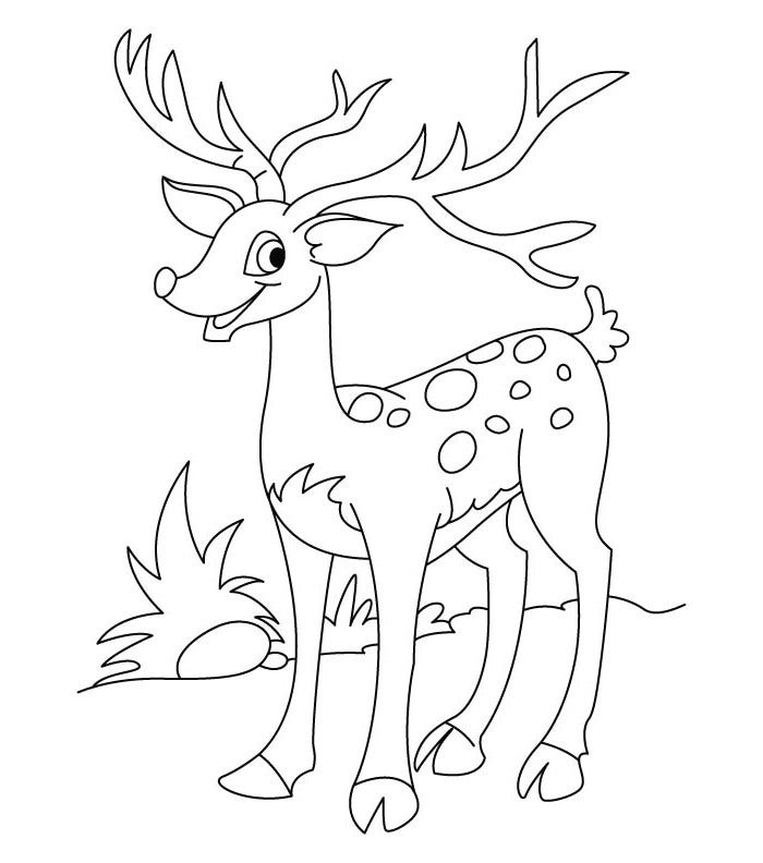 happy deer template