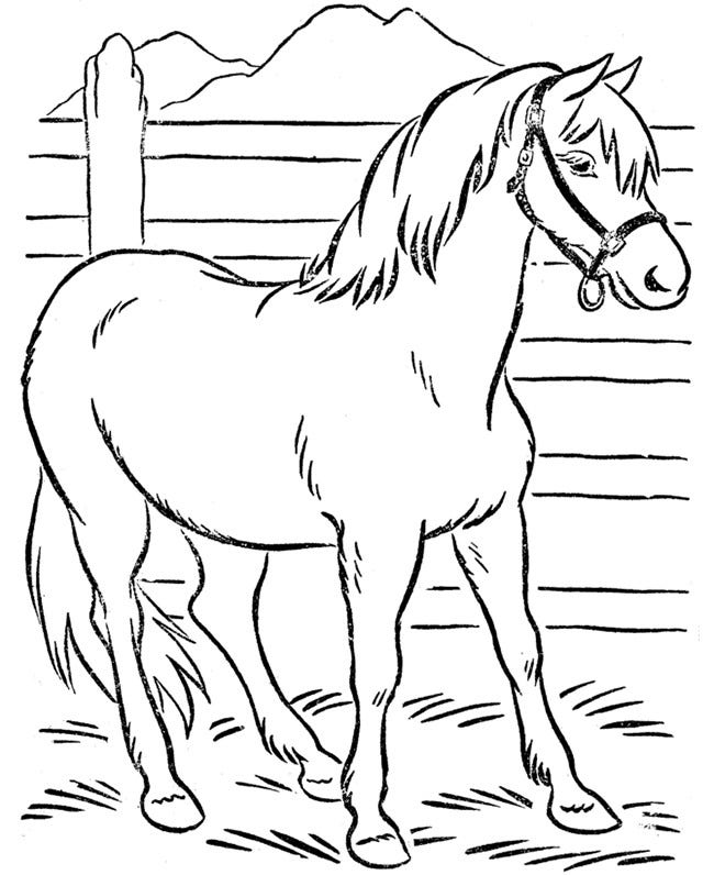 Horse template animal templates free premium templates for Horse coloring pages printable free