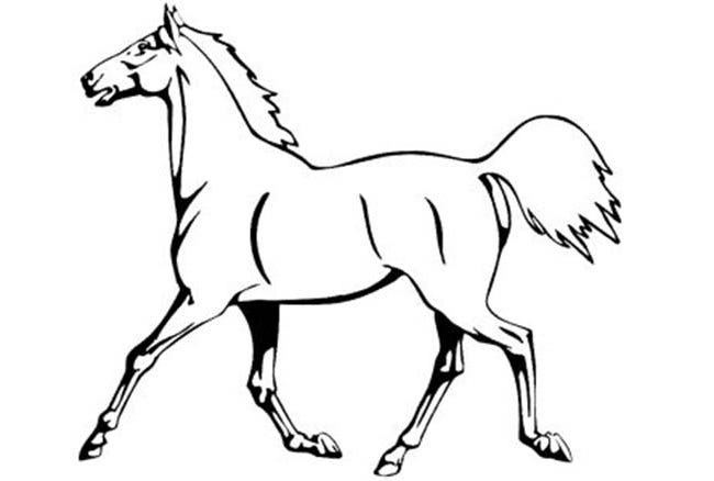 photo relating to Horse Stencil Printable identified as Horse Template - Animal Templates Absolutely free High quality Templates