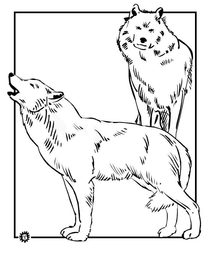 hunting wolf coloring page