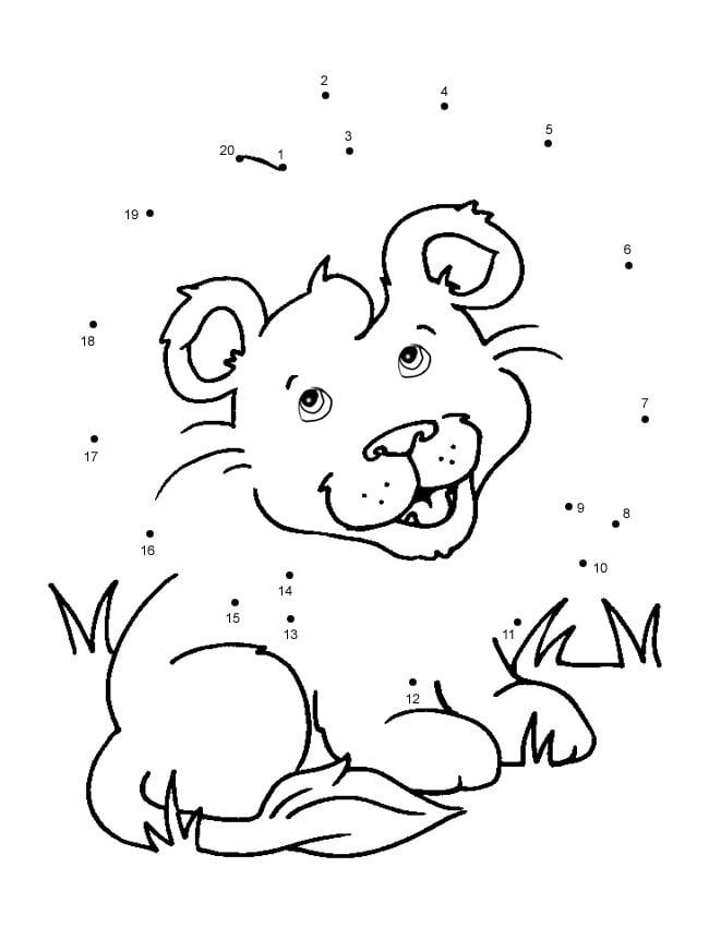 Lion Cub Dot To