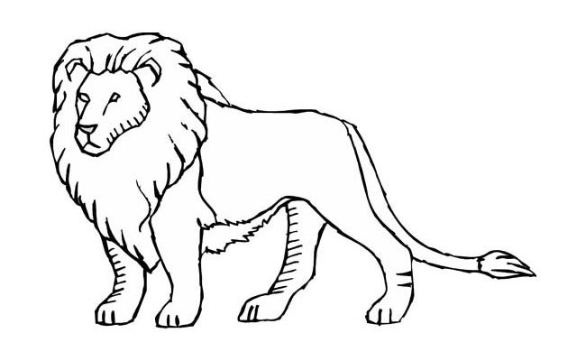 lion template 34