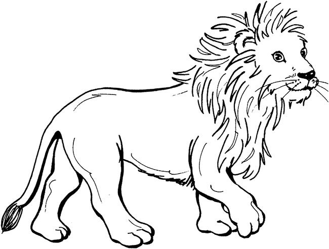 lion template 37