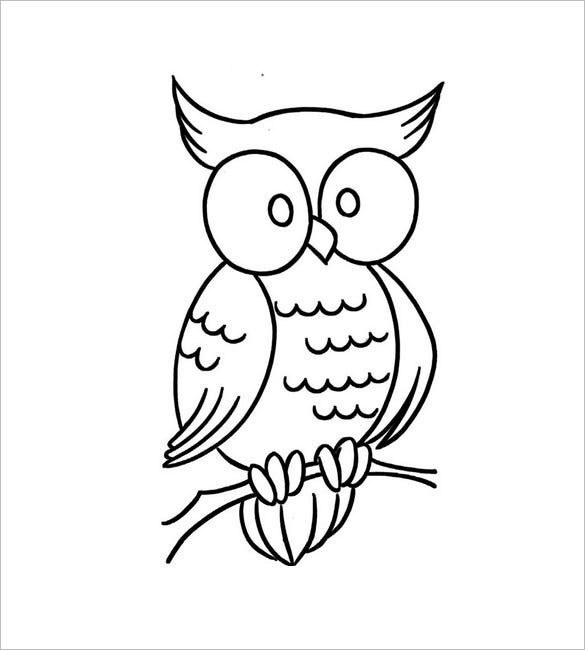 little owl template