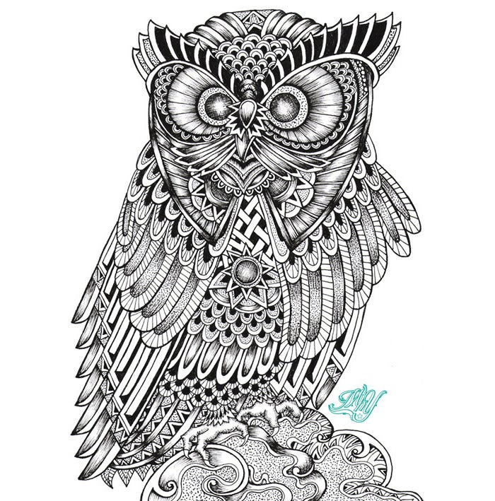 owl 17252499