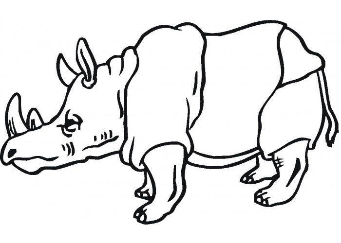 old rhino coloring page
