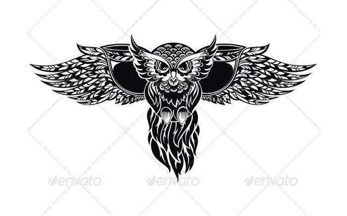 owl 8162417