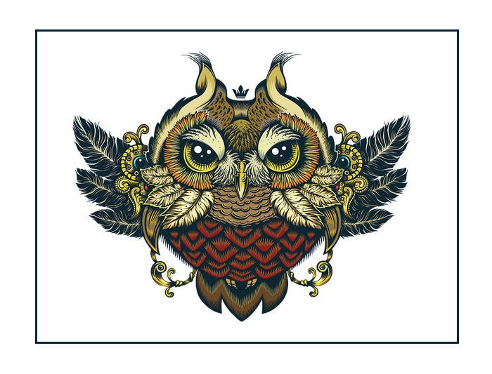 owl artwork 4792429