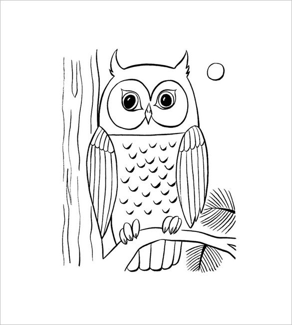 owl coloring page1