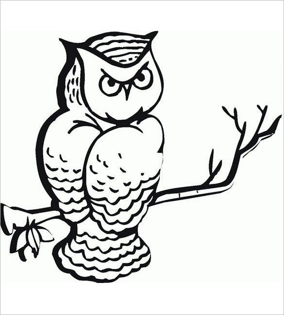 owl coloring page2