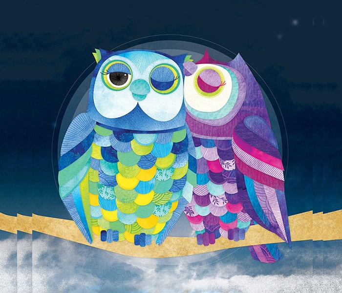 owl couple illustration color
