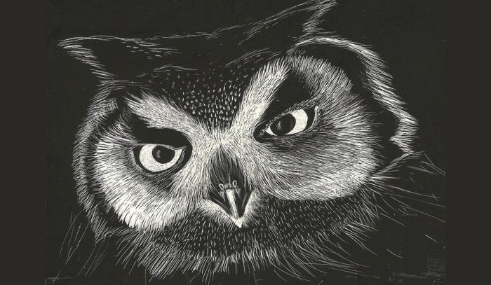 owl illustration animal art giclee print