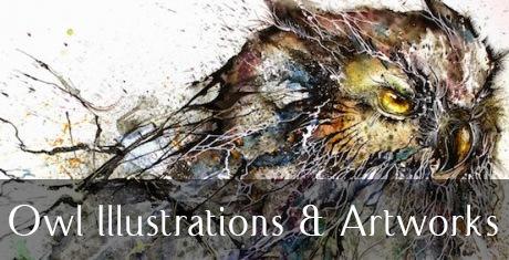 owlillustrationsartworks