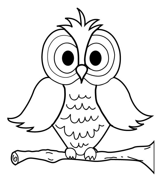 image regarding Owl Printable Template referred to as Owl Template - Animal Templates Cost-free Top quality Templates