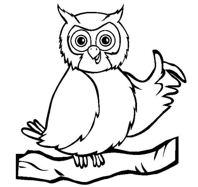 Cute Animal Colouring In : Owl template animal templates free & premium