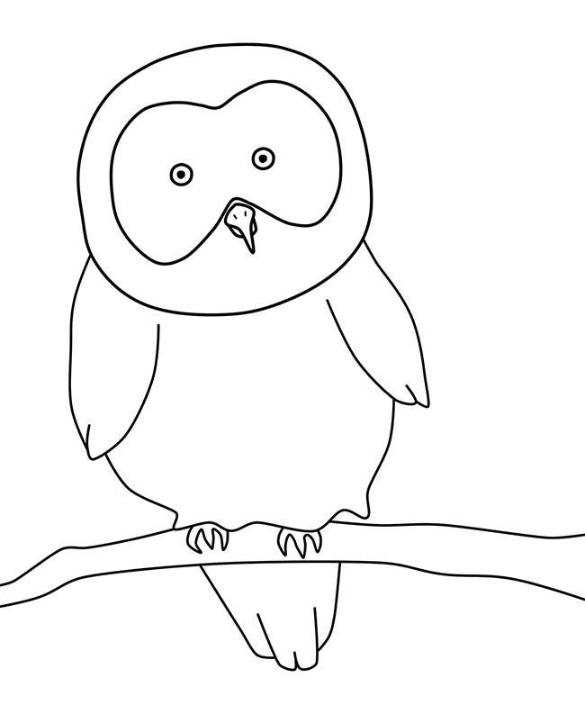 Owl Template Animal Templates Free Premium