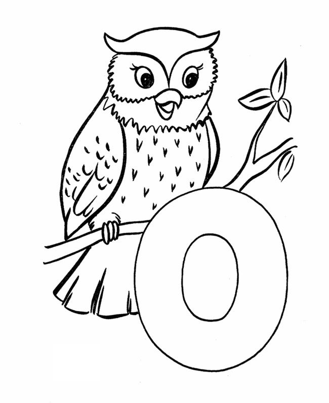 Owl Template Animal Templates