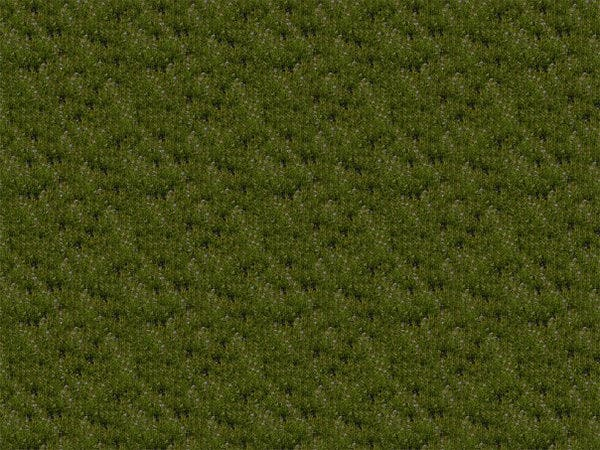 photoshop grass texture