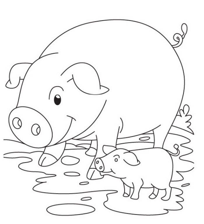pig and piglet coloring page