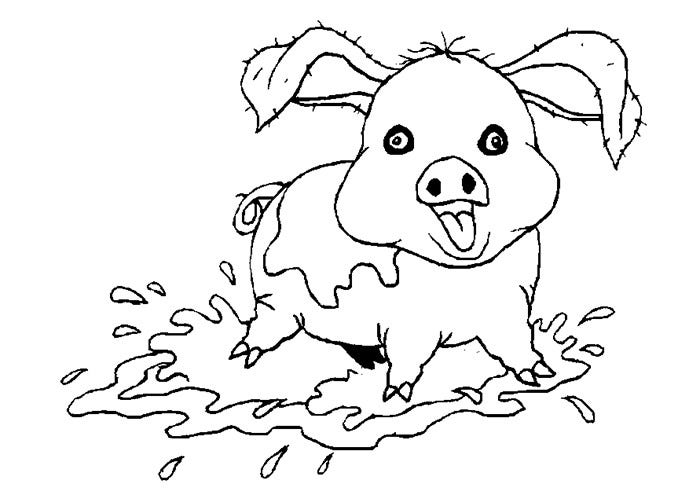 pig animal coloring page