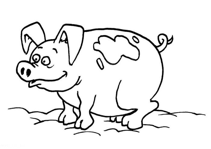 picture relating to Printable Pig named Pig Template - Animal Templates Absolutely free Top quality Templates