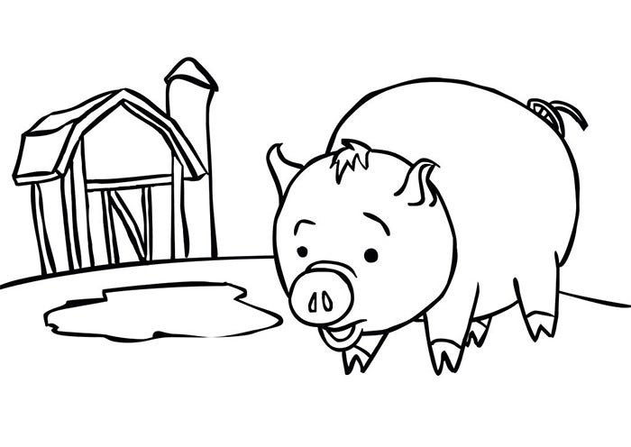 coloring pages of pigs and piglets | Pig Template - Animal Templates | Free & Premium Templates