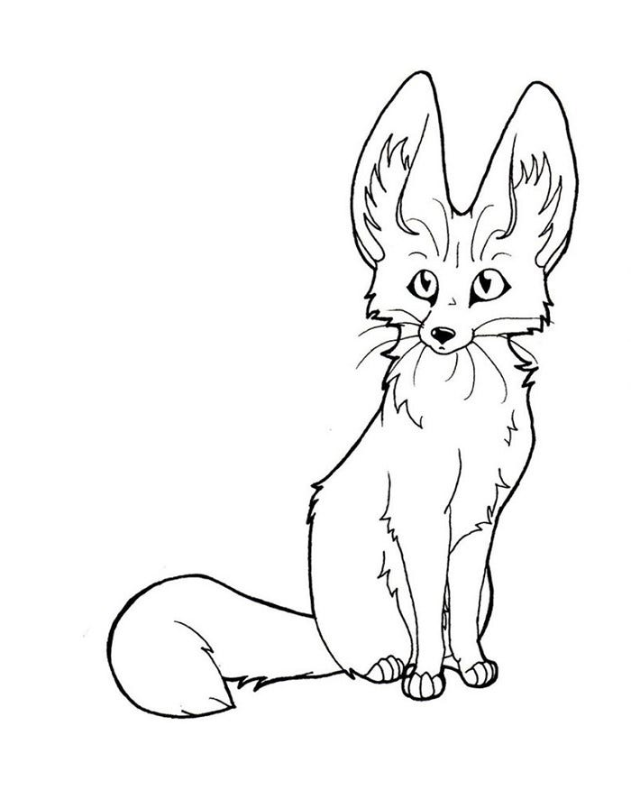 printable fennec fox template