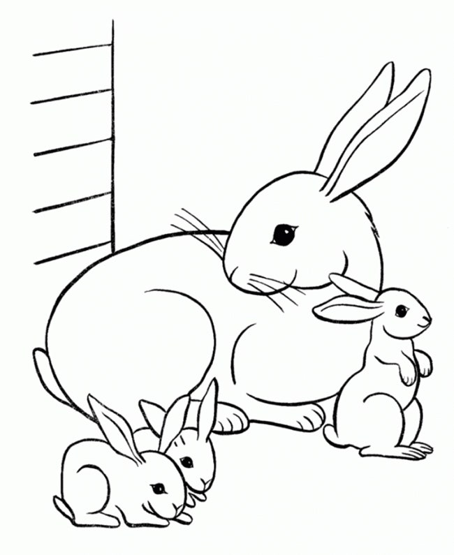 Printable Rabbit Coloring Page 2