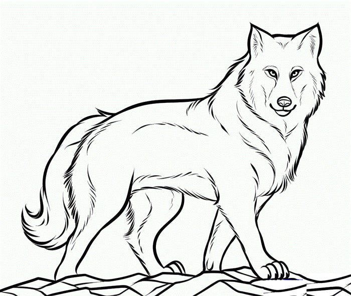 image regarding Wolf Printable called Wolf Template - Animal Templates Free of charge High quality Templates