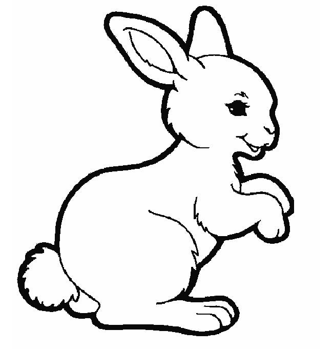 rabbit coloring page 2