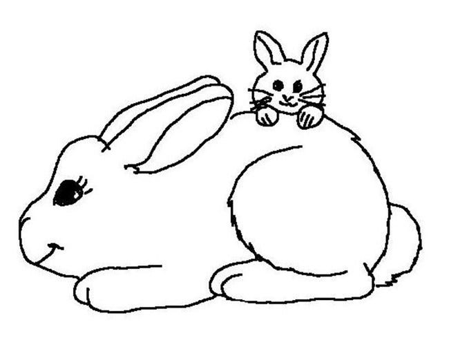 rabbit farm coloring page