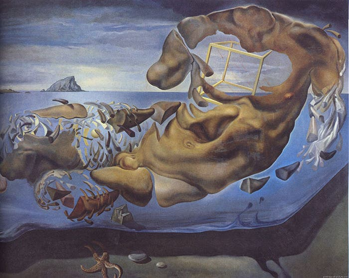 30+ Salvador Dali Paintings | Free & Premium Templates