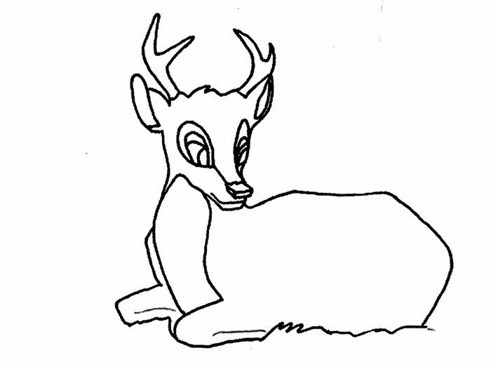sample deer template