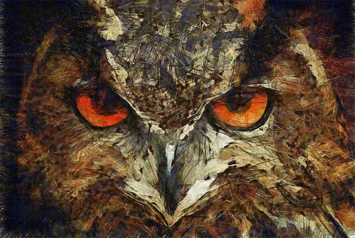 sharpie owl
