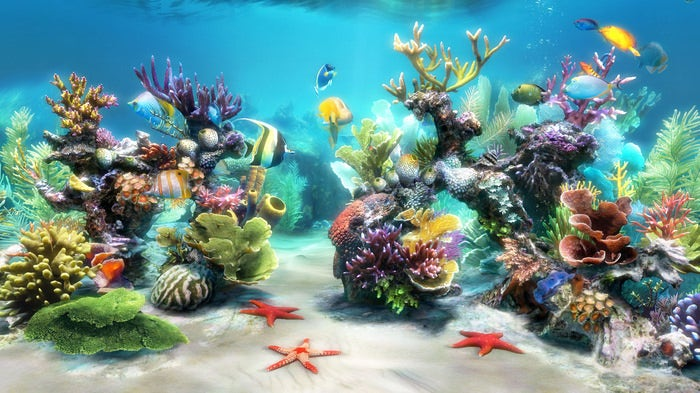 50 Best Aquarium Backgrounds Free Premium Templates